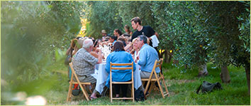 Temecula Olive OIl Company - Outstanding in the Field